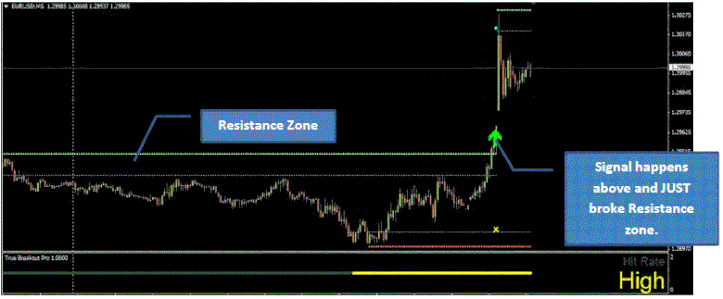 T forex 2 rules