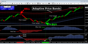 Live forex channel